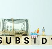 SLIM: Subsidieregeling leren en ontwikkelen in het mkb